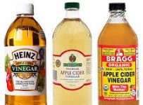 cheap apple cider vinegar bottles