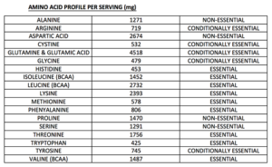 Dymatize Elite 100% Whey Protein UK Amino Acid Breakdown label