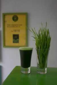 Cheap Super Greens Powder UK