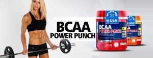 USN BCAA power punch supplement
